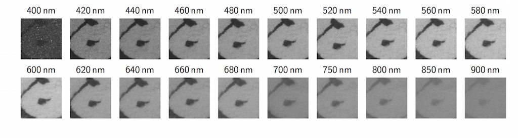 Square section of sample O601R multispectral image stack at each wavelength. Significant variation of intensity an contrast in the writing and parchment can be observed.