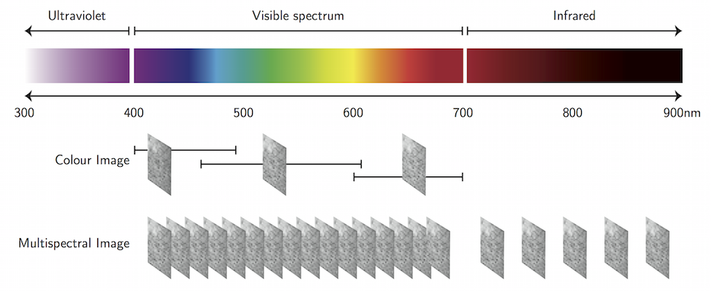 Multispectral images are captured in a similar process as colour images. A colour image is a combination of three separate images captured at selected ranges of the visible spectrum representing  blue, red and green tones. A multispectral image is captured is a combination of a series of images captured at discrete short ranges of the light spectrum. Multispectral images may include captures from the near-infrared and ultraviolet spectra.